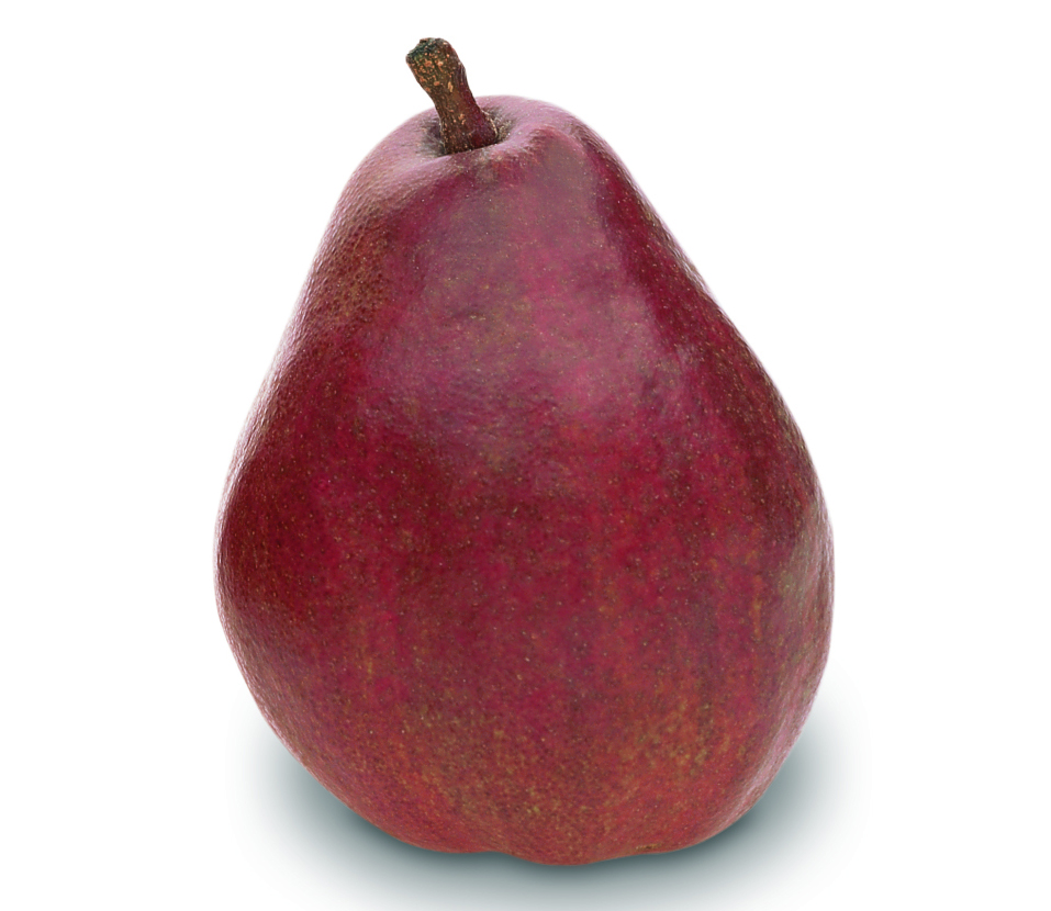 Image result for red anjou pear