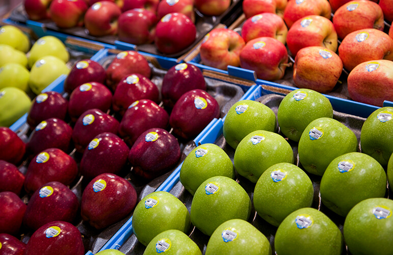 Green and red apples displayed in open boxes